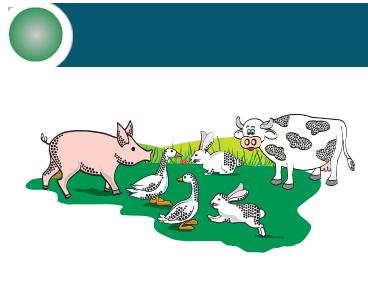 Ingredienti, prodotti chimici e additivi per nutrizione animale | EVS